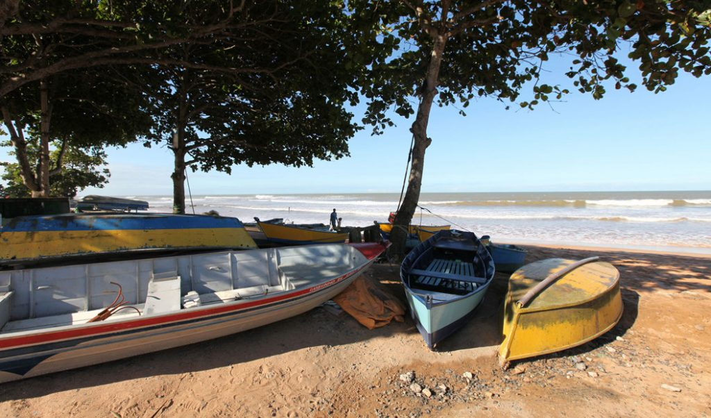 canoes on beach